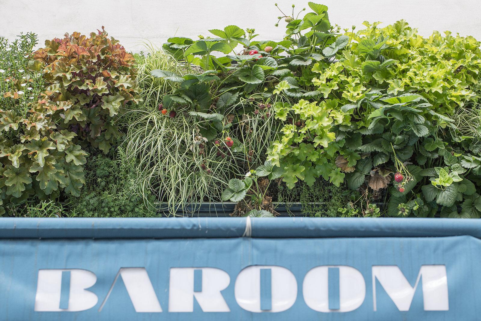 Baroom